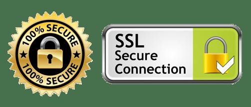 ssl secure male escort website