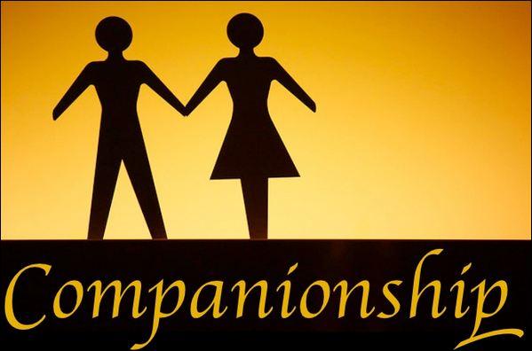 male companionship